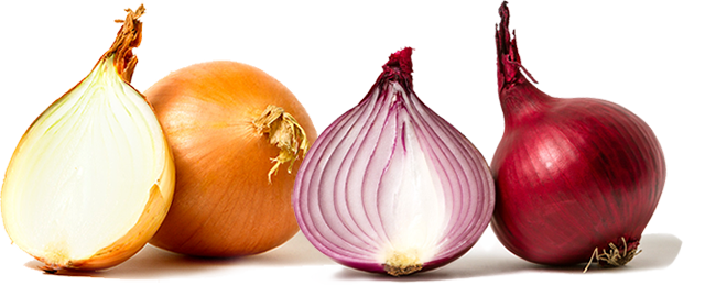 Heart of the onion
